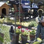 In direkter Nachbarschaft zur Landesaufnahmestelle für Flüchtlinge befindet sich eine Kleingärtnerkolonie.