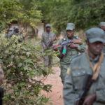 Gefechtsausbildung malischer Soldaten. In Schützenreihe durchkämmen die Soldaten das Gelände. Ein Ausbilder der Bundeswehr kontrolliert das Training.