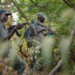Gefechtsausbildung malischer Soldaten. Zwei malische Soldaten durchkämmen schwieriges Gelände.
