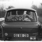Ein vollbesetzter Trabant 601 mit Orangen und Bananen auf der Heckscheibenablage fährt über die Autobahn A2 in Richtung Berlin.