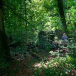 Oberbürgermeisterin Susanna Tausendfreund baut in Pullach die Erdwärme aus, schützt den Wald und fördert bezahlbares Wohnen.